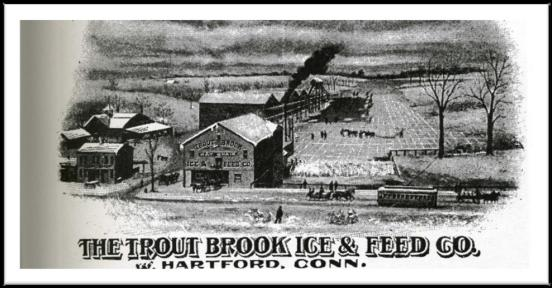 Trout Brook ad